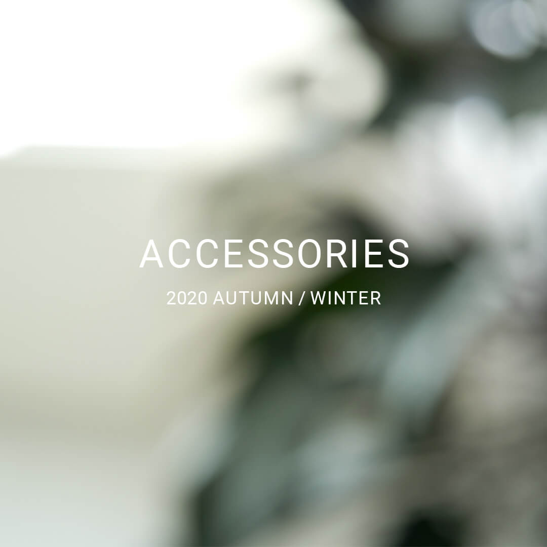 ACCESSORIES 2020AW  collection